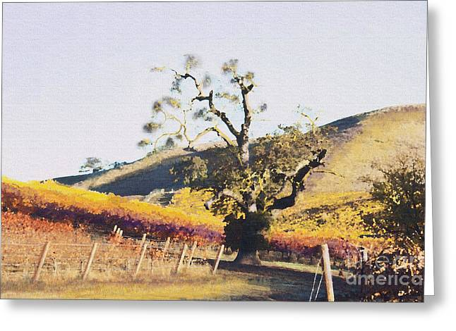 Clos La Chance Winery Greeting Cards - California Vineyard Series Oaks in the Vineyard Greeting Card by Artist and Photographer Laura Wrede