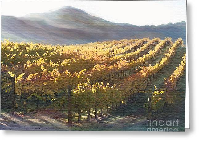 California Vineyard Series Vineyard in the Mist Greeting Card by Artist and Photographer Laura Wrede