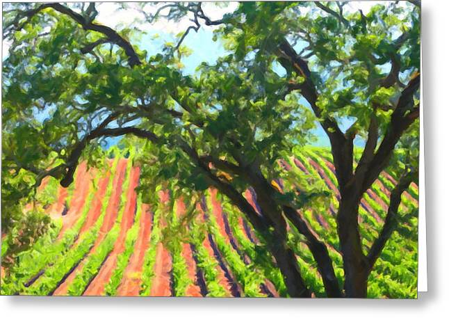 Fruit And Wine Digital Greeting Cards - California Vineyard Wine Country 5D24519 square Greeting Card by Wingsdomain Art and Photography