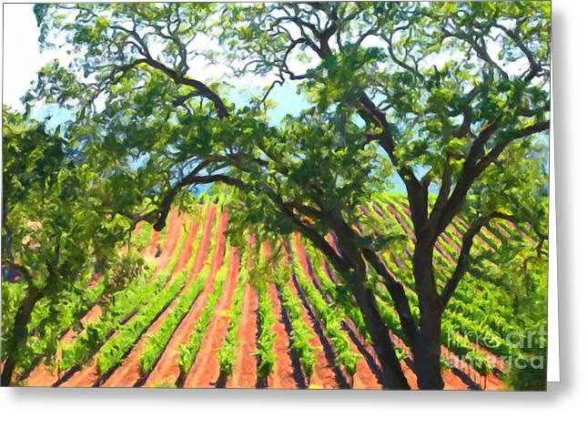 Fruit And Wine Digital Greeting Cards - California Vineyard Wine Country 5D24519 Greeting Card by Wingsdomain Art and Photography