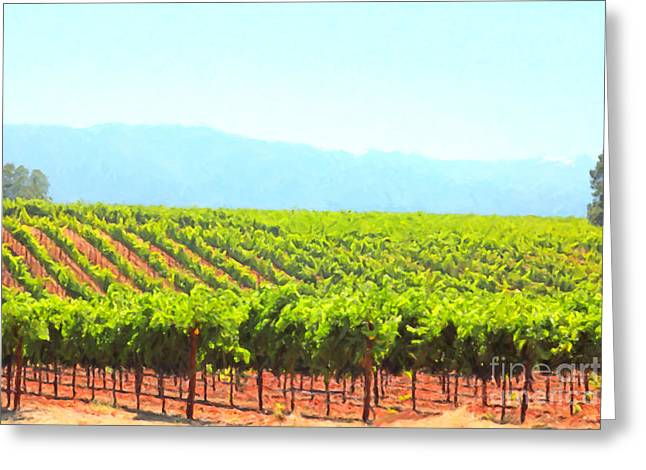 Wine Grapes Digital Art Greeting Cards - California Vineyard Wine Country 5D24623 Greeting Card by Wingsdomain Art and Photography