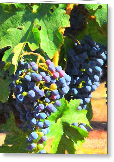 Wine Grapes Digital Art Greeting Cards - California Wine Country Grape Vine 5D24630 Greeting Card by Wingsdomain Art and Photography