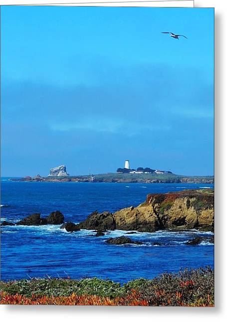 Piedras Blancas Lighthouse Greeting Cards - Californias Finest Greeting Card by Julie Hughes