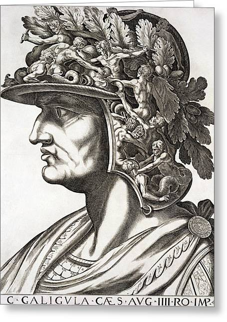 Assassinated Drawings Greeting Cards - Caligula Caesar , 1596 Greeting Card by Italian School