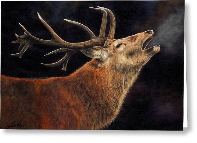 Red Deer Greeting Cards - Call of the Wild Greeting Card by David Stribbling