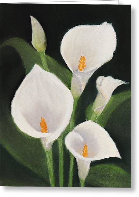 Calla Lily Pastels Greeting Cards - Calla Lilies Greeting Card by Anastasiya Malakhova