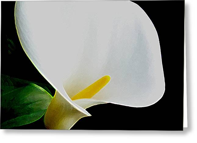 Calla Lily Greeting Cards - Calla Lily Spectacular Greeting Card by Ben and Raisa Gertsberg