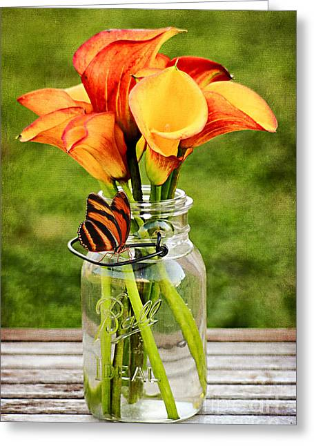 Mason Jars Greeting Cards - Callas and the Butterfly Greeting Card by Darren Fisher