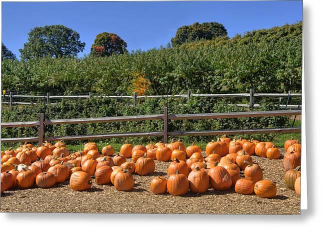 New England Farm Scene Greeting Cards - Calling Autumn Greeting Card by Joann Vitali