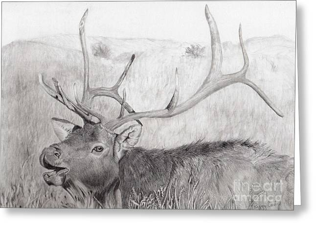 Wild Life Drawings Greeting Cards - Calling Long Distance Greeting Card by Peggy Covic