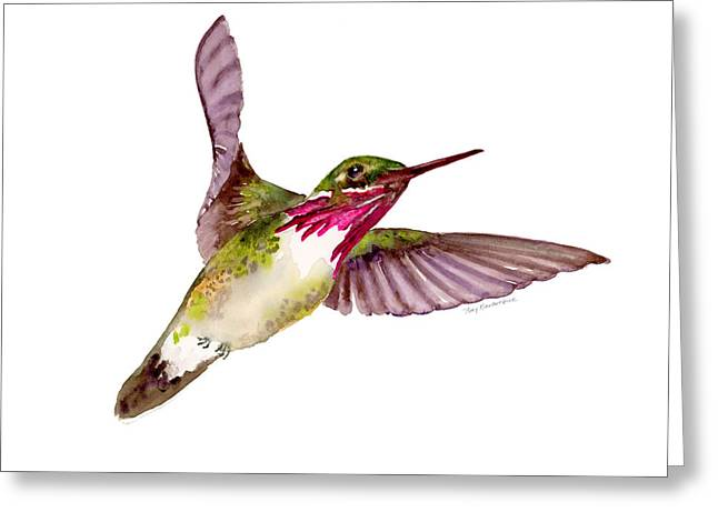Calliopes Greeting Cards - Calliope Hummingbird Greeting Card by Amy Kirkpatrick