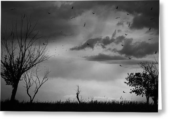 Field. Cloud Greeting Cards - Calls Of Warn  Greeting Card by Jerry Cordeiro