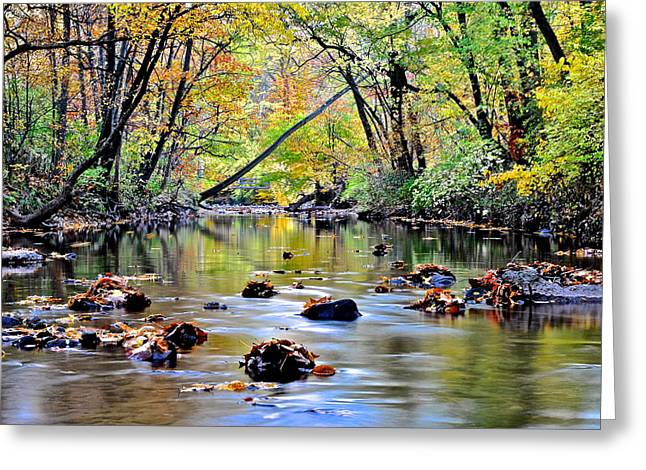 Willow Lake Greeting Cards - Calm Cove Greeting Card by Frozen in Time Fine Art Photography