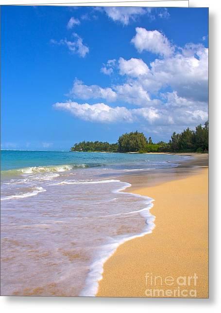 Maui Greeting Cards - Calm day a Baldwin Beach Greeting Card by Andy Jackson