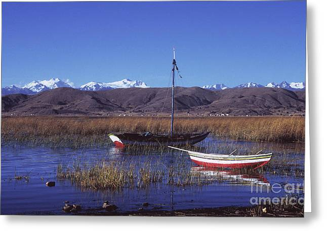 Reed Bed Greeting Cards - Calm day on Lake Titicaca Greeting Card by James Brunker