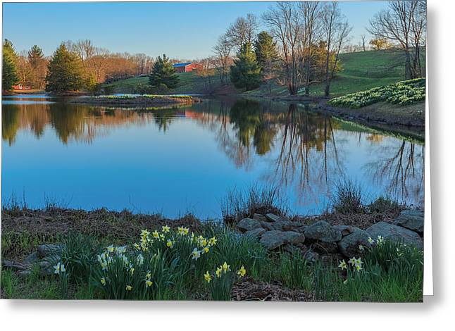 Calm Evening Greeting Card by Bill  Wakeley