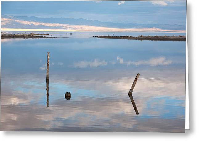 Calm Lake Greeting Cards - Calm Greeting Card by Peter Tellone