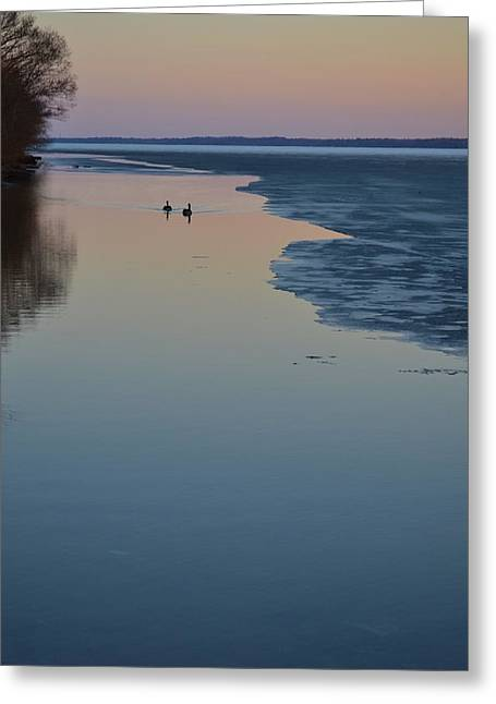 Calmness  Greeting Card by Lyle Crump