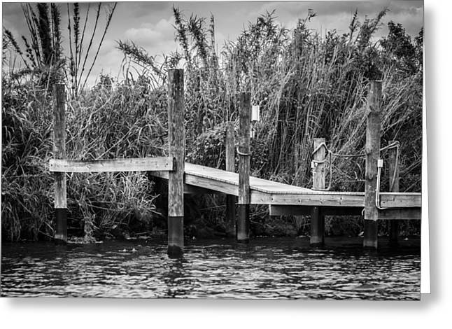 Caloosahatchee River Dock - Bw Greeting Card by Carolyn Marshall