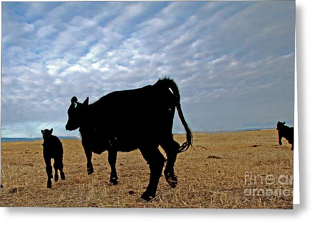 Steen Greeting Cards - Calving Harney Oregon Greeting Card by Michele AnneLouise Machholz