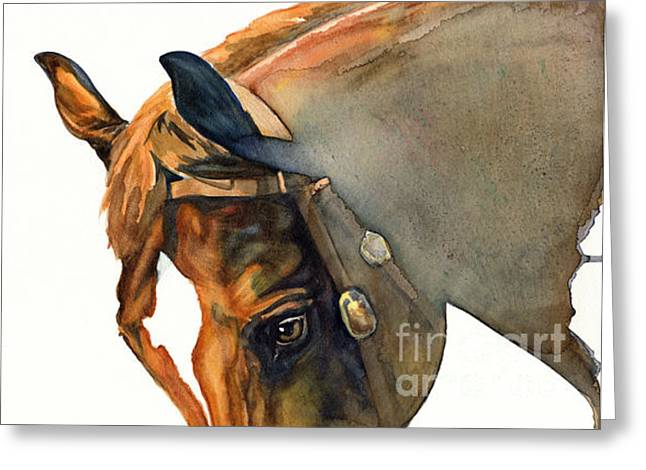 Watercolor. Equine. Bridle Greeting Cards - Calypso Greeting Card by Joanna Zeller Quentin
