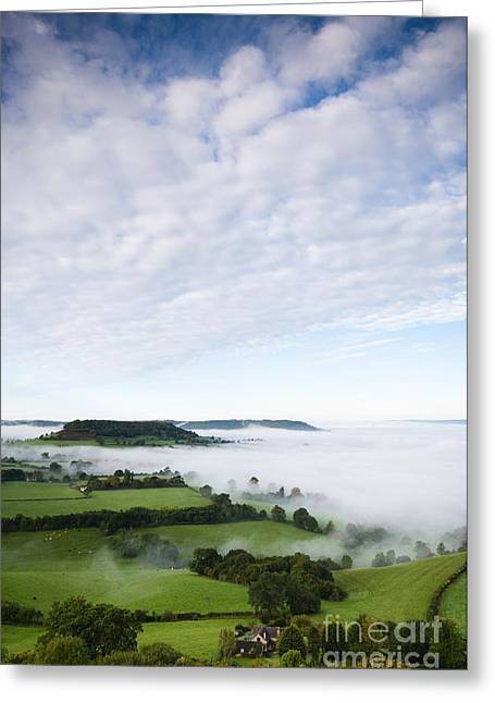 Conditions Greeting Cards - Cam Long Down Greeting Card by Anne Gilbert