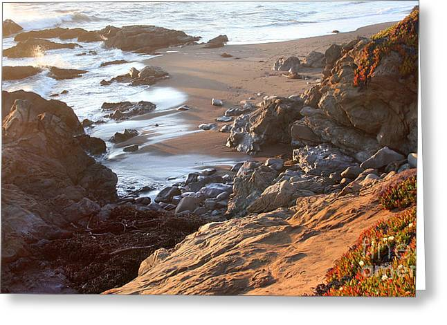 Cambria Greeting Cards - Cambria Coastline Greeting Card by Michael Rock