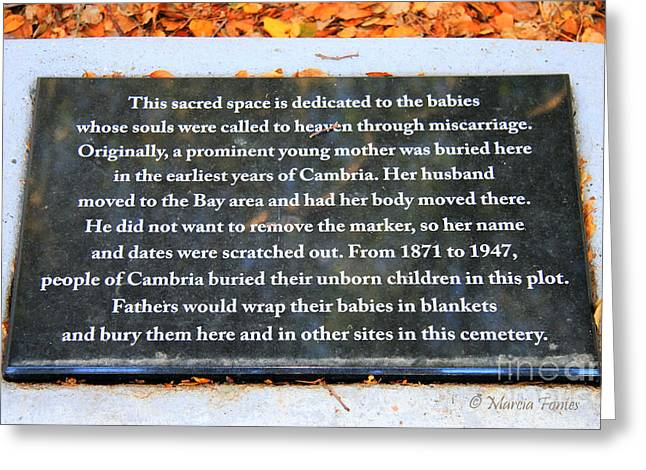 Cambria Greeting Cards - Cambria Unborn Children 1871-1947 Greeting Card by Tap  On Photo