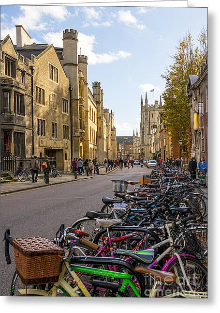 College Avenue Greeting Cards - Cambridge Greeting Card by Svetlana Sewell