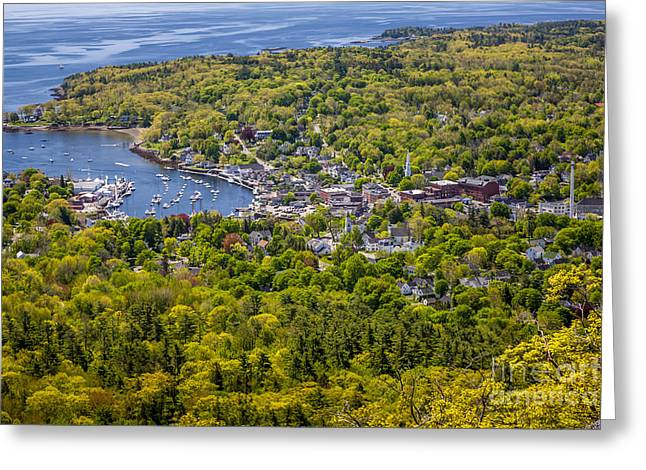 Spring In Maine Greeting Cards - Camden Harbor View Greeting Card by Susan Cole Kelly