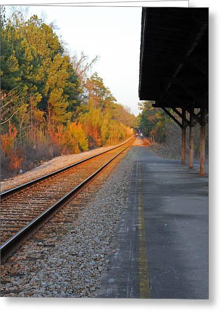 Carolyn Stagger Cokley Greeting Cards - Camden sc station4571 Greeting Card by Carolyn Stagger Cokley