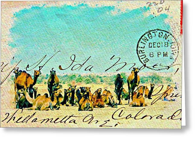 Shepherds Greeting Cards - Camel Herd Desert India Rajasthan Greeting Card by Sue Jacobi