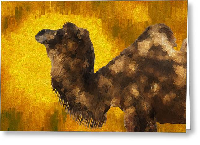 Dromedary Greeting Cards - Camel In Desert Sun Greeting Card by Jack Zulli