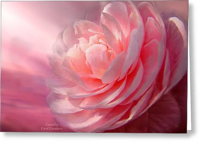 Camellia Greeting Card by Carol Cavalaris