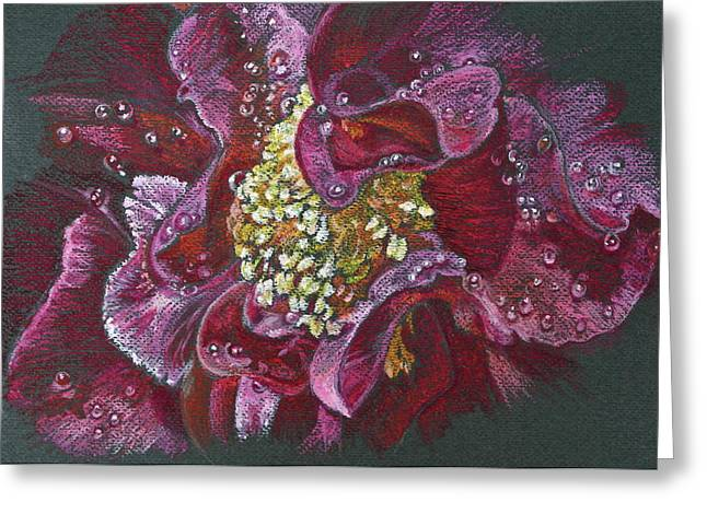 Botany Pastels Greeting Cards - Camellia Rain Greeting Card by Michele Myers