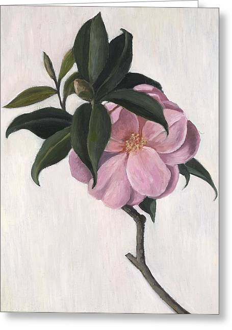 Green Leafs Drawings Greeting Cards - Camellia Greeting Card by Ruth Addinall