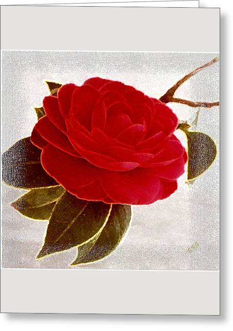Camellia Spectacular Greeting Card by Ben and Raisa Gertsberg