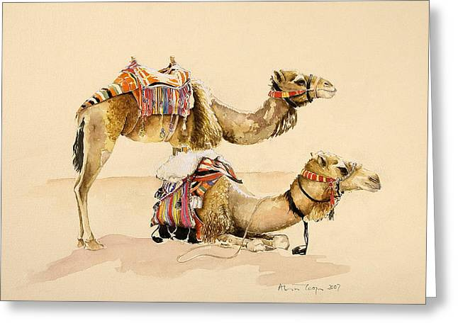 Petra Drawings Greeting Cards - Camels from Petra Greeting Card by Alison Cooper
