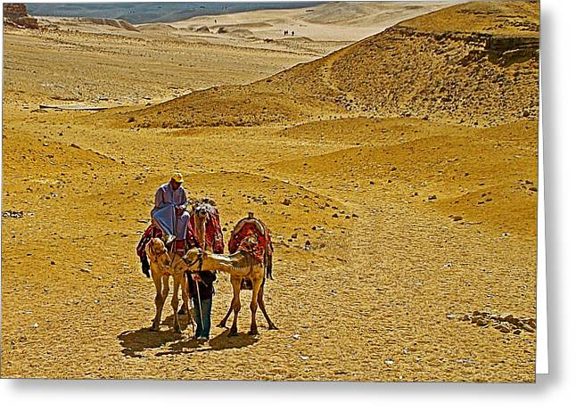 The Plateaus Digital Art Greeting Cards - Camels Nuzzling on the Giza Plateau-Egypt  Greeting Card by Ruth Hager