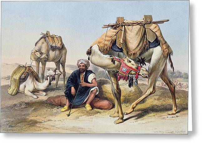 Dromedary Greeting Cards - Camels Resting In The Sherkiyeh, Land Greeting Card by Emile Prisse d