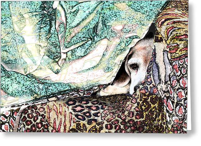 Dog On Couch Greeting Cards - Camouflage Greeting Card by Elaine Berger