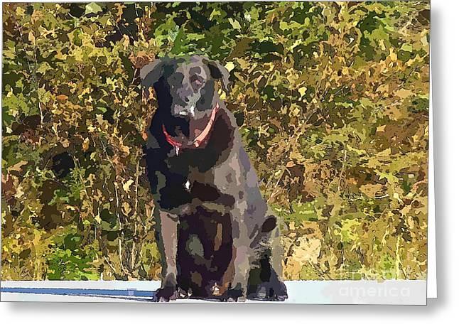 Green Barbara Griffin Art Greeting Cards - Camouflage Labrador - Black Dog - Retriever Greeting Card by Barbara Griffin