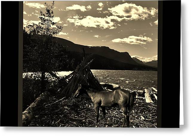 Copyright Protected. Greeting Cards - Camp Site Greeting Card by Barbara St Jean