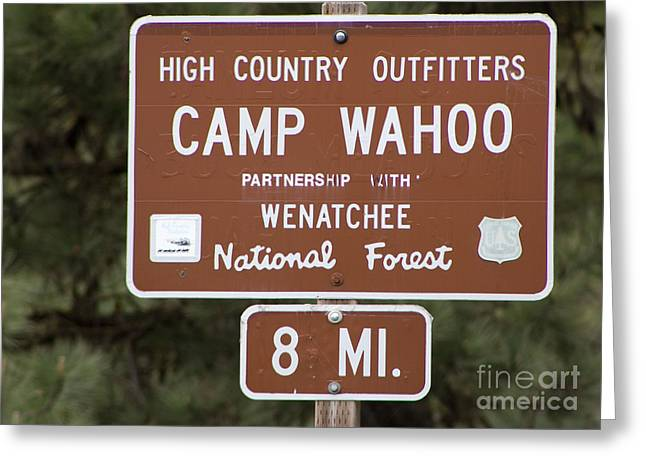 Wahoo Greeting Cards - Camp Wahoo Greeting Card by Valerie Pulsifer