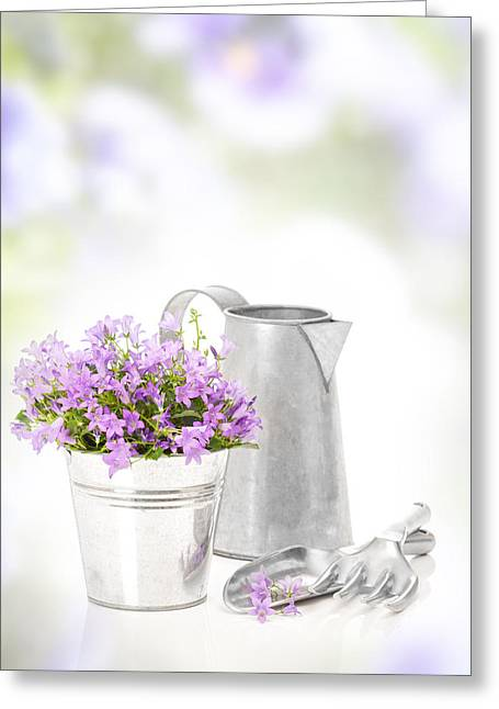 Water Jug Greeting Cards - Campanula Flowers Greeting Card by Amanda And Christopher Elwell