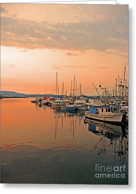 Masts Greeting Cards - Campbell River Marina Greeting Card by Nancy Harrison