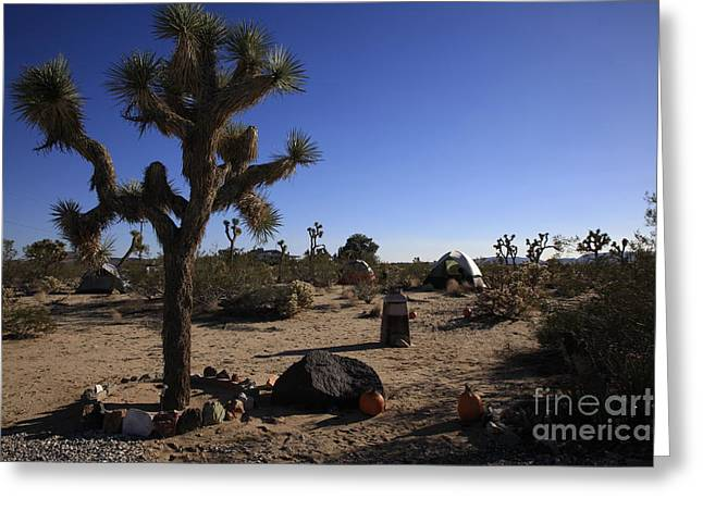 Nina Prommer Greeting Cards - Camping in the desert Greeting Card by Nina Prommer
