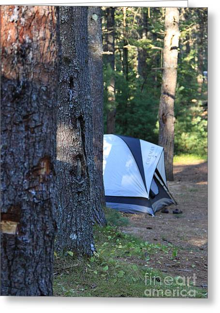 Fire In The Wood Greeting Cards - Camping tent Greeting Card by Michael Mooney