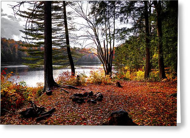 Campsite On Cary Lake Greeting Card by David Patterson