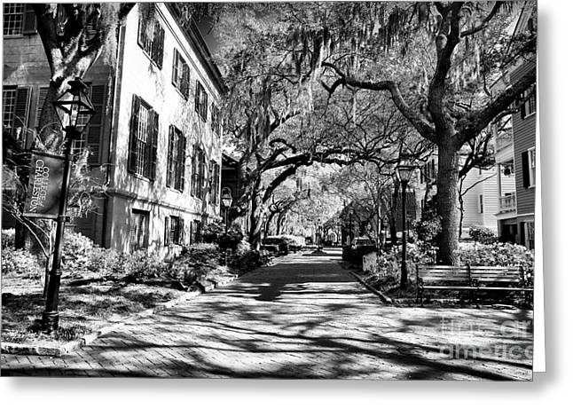 College Buildings Images Greeting Cards - Campus Walk Greeting Card by John Rizzuto